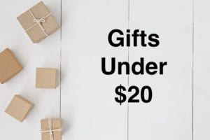 5 Christmas Gifts under $20