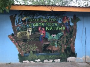 Natural Sciences experience Costa Rican conservation