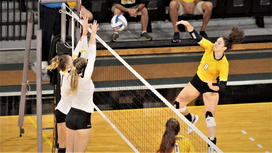 MacKenzie Daub playing volleyball.